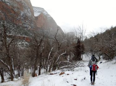 Zion Winter Conditions